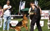 16.06.12, Voronezh; Team Bulle Hof GLAFIRA, 2.Pl. in der GHKL-R, Richter FCI - J. Petkovic (Serbien)