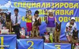 03.08.2014, Moskau, Siegerschau Russland,  Siegerung GHKL-H, Richter SV - Wilchelm Nordsieg