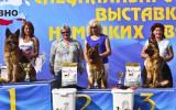 07.06.2014, Zuchtschau in Smolensk (Russland), 1V in der GHKL-H,  Richter - E.Lutow