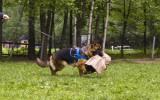 12 месяцев, Тренировка по защите